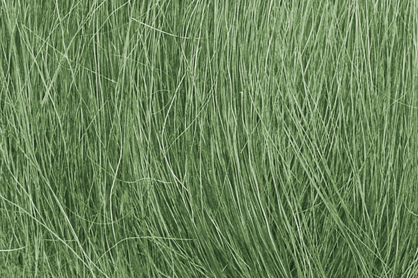 Field Grass Medium Green - Image 1