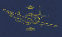 P-51D Mustang Royal Class Edition - Image 1