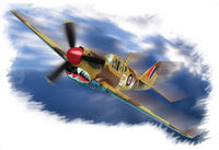 P-40M Kitty hawk - Image 1
